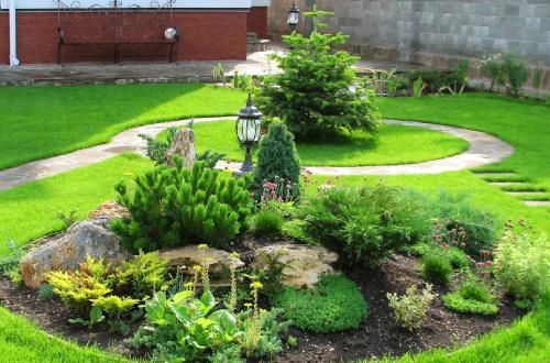 Подбор растений для каменистого сада